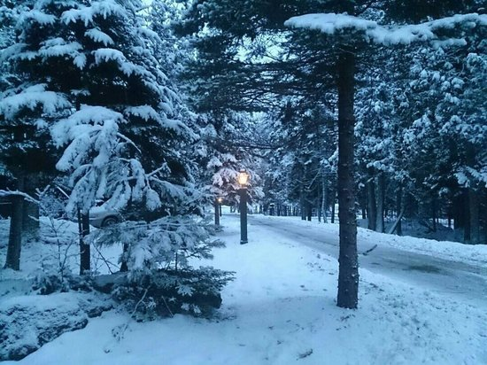 Point Lookout: Winter wonderland at the cabins!