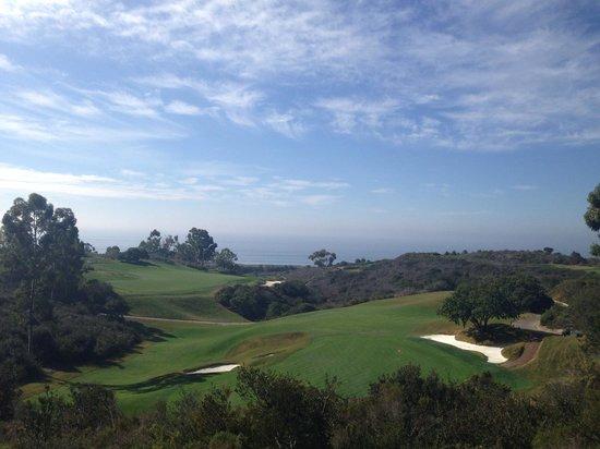 The Resort at Pelican Hill: Ocean view