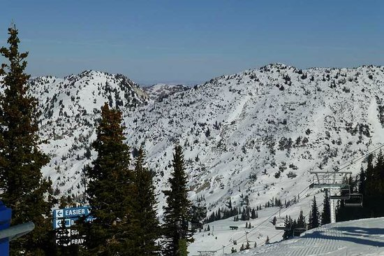 Snowbird Ski and Summer Resort: At the top of Baldy Express