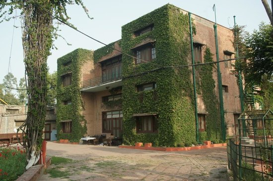 Mrs. Bhandari's Guesthouse: Mrs Bandari's Guesthouse (Amritsar) - back garden