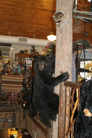 The Swinging Bridge Restaurant: Got my wish --- I saw a bear today