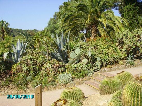 Jardin Santa Clotilde : В саду