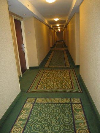 南加州大學哥倫比亞市中心萬怡飯店照片