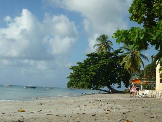 Sol Caribe Sea Flower Hotel : La playa privada del hotel de la Isla Providencia de la misma cadena