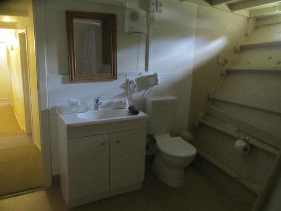 Woodlyn Park: Lower level bathroom