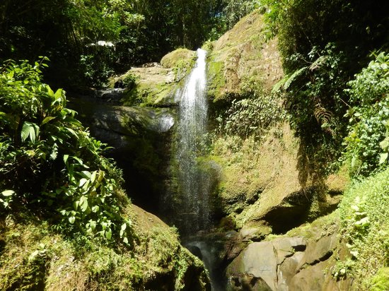 Samasati Retreat & Rainforest Sanctuary: Waterfall