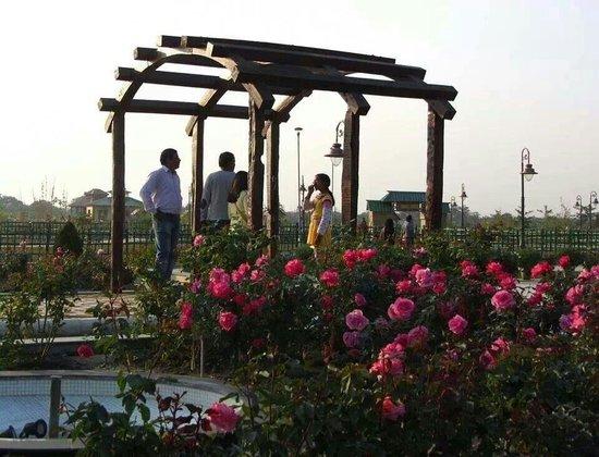 Eco Tourism Park: Eco park rose garden