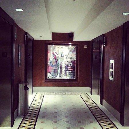 Hard Rock Hotel at Universal Orlando: Hotel elevators
