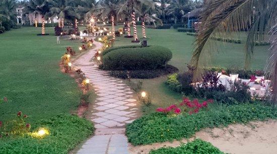 Royal Orchid Beach Resort & Spa, Goa: Lawn