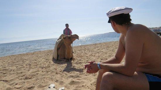 Helnan Nuweiba Bay Resort: местные бедуины