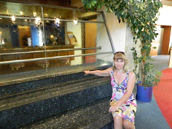 Hotel Ilf: В холле отеля водопад