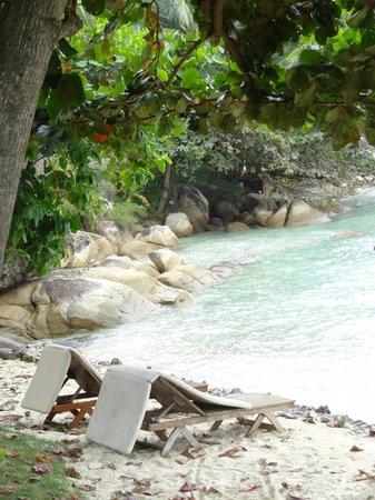Renaissance Koh Samui Resort & Spa: Coast