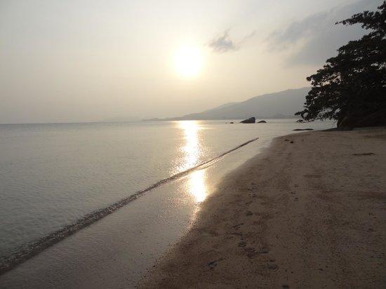 Renaissance Koh Samui Resort & Spa: Beach at sunrise