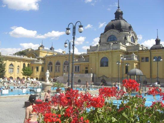 Széchenyi Baths and Pool: Szechenyi Baths, Budapest
