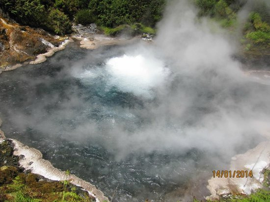 Waikite Valley Thermal Pools: Waikite hot spring
