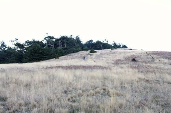 Cattle Point: great hills