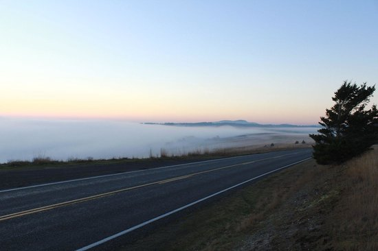Cattle Point: rolling hills, being covered by fog
