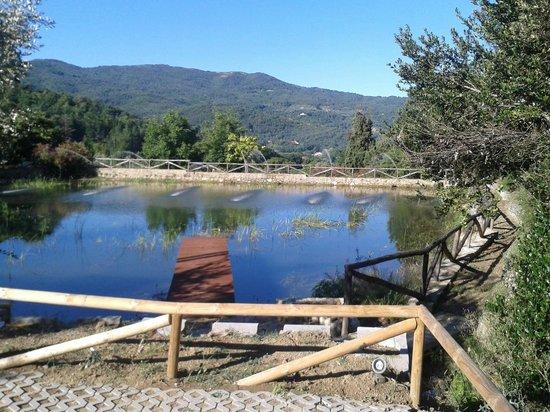 Villa Cilnia: foto del lago
