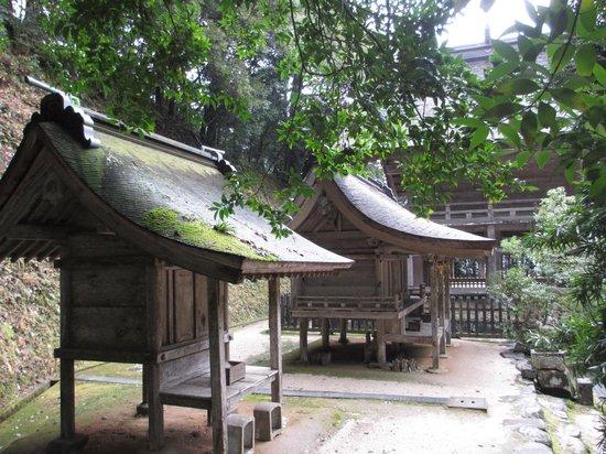 Kamosu Shrine: お社