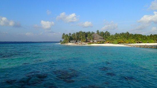 Filitheyo Island Resort : Sunset Bar