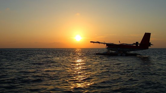 Filitheyo Island Resort : Sunrise seaplane