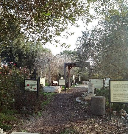 Kibbutz Lavi Hotel: Archeological educational site