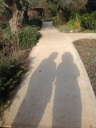 Kibbutz Lavi Hotel: Me & My Shadow strolling through the kibbutz