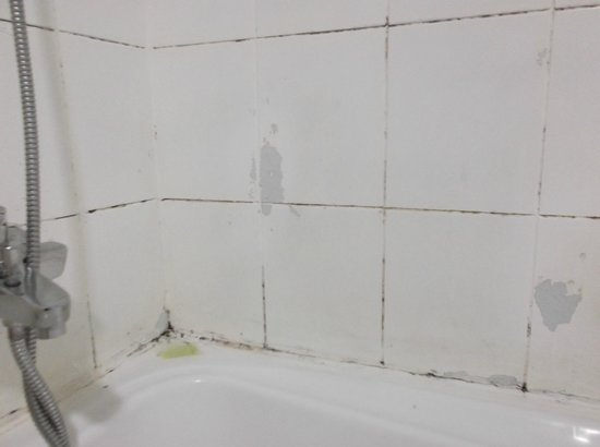 Deebaj Al Khabisi Plaza: Mildew in bathroom