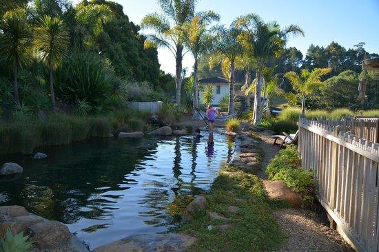 Avalon Resort : Pool
