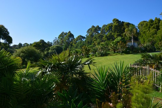 Avalon Resort : Grounds - View from Emerald Room