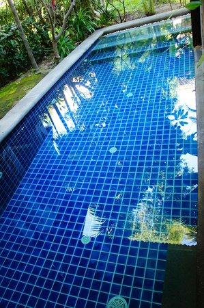Royal Muang Samui Villas: private pool