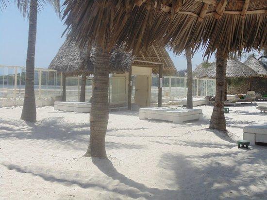 Barracuda Inn : spiaggia