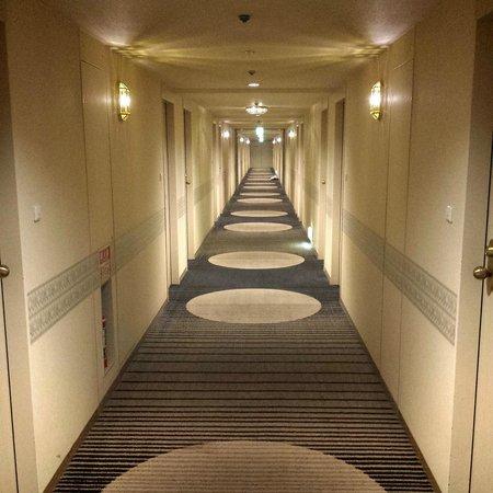 Hotel Nikko Osaka: Hotel's hallway