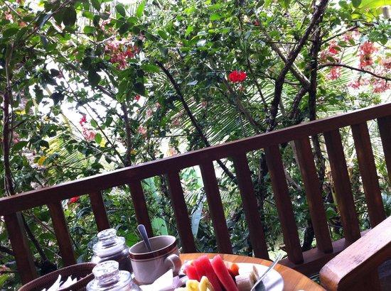 Jawi House & Painter: ベランダからの眺めはこんな感じ。