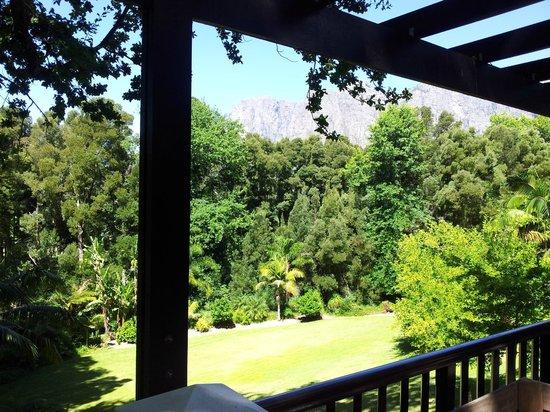 MolenVliet Oosthuizen Family Vineyards : uitzicht vanaf balkon kamer 1
