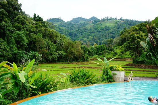 Hmong Hilltribe Lodge : the pool and the view