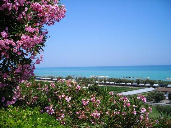 Parco sul Mare: Vista del mare
