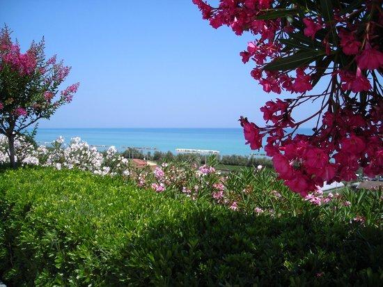 Parco sul Mare: Panorama