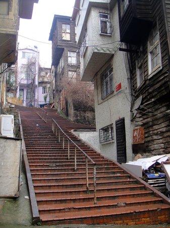 Circle Istanbul : local neighbourhood
