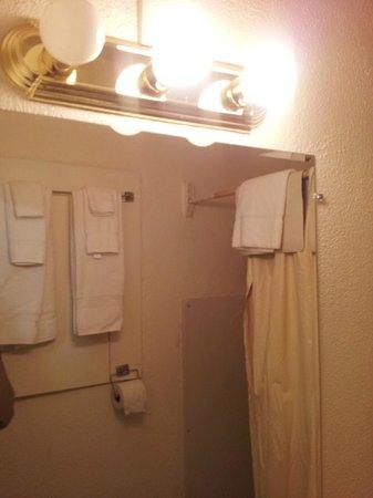 Y Motel: bathroom