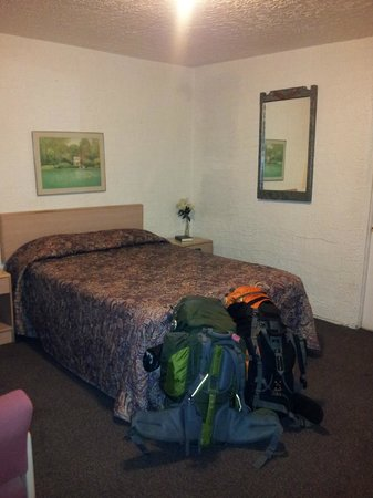 Ace Lodge: room