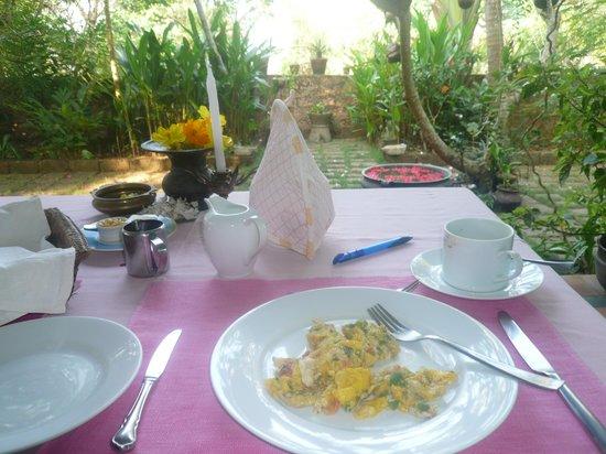 Villa Jacaranda : breakfast in the garden