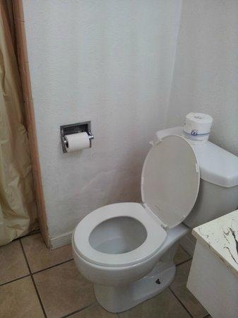 Ace Lodge: bathroom