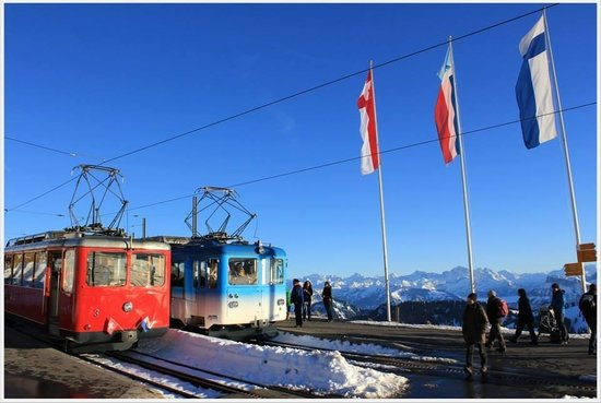 Mt. Rigi: The train that brought us up and down