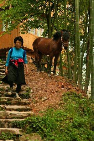 LongJi Terraces Tian ranju Inn: Yao people