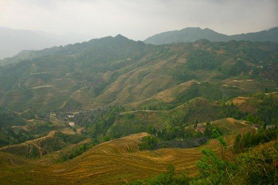 LongJi Terraces Tian ranju Inn : view form Golden Buddha peak