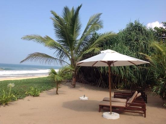 Temple Tree Resort & Spa: lovely view of beach from the hotel.
