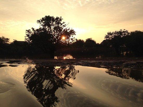 Kompong Phluk: Reflections at sunset