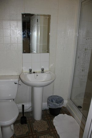 The Merchants Hotel: Toilet and shower in double room