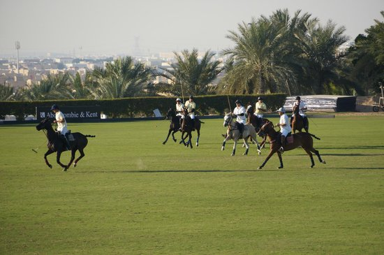 Desert Palm Dubai: polo on field 1